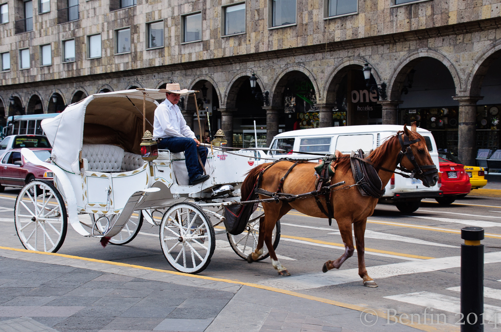 Guadalajara-140715-DSC_0497_lowres