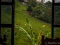 Xilitla_Aquismon-140709-DSC_0286_lowres